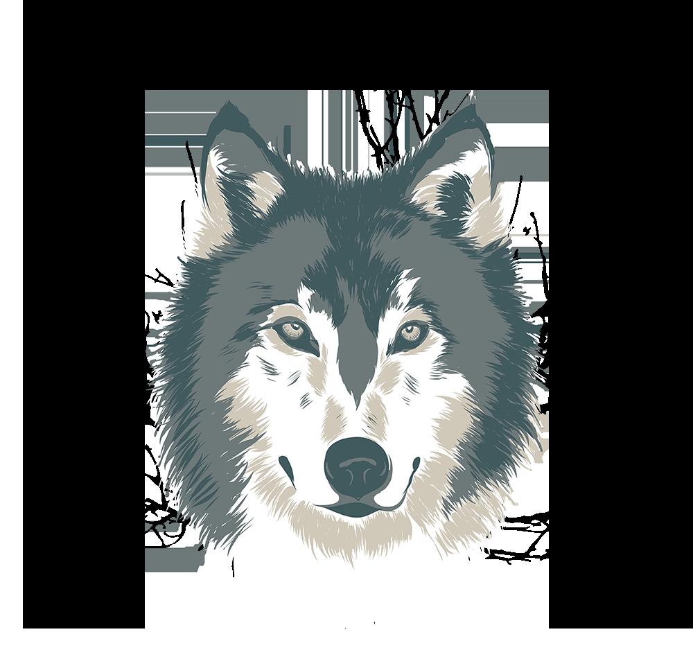 Wolf Illustration Artwork Nicole Hanusek