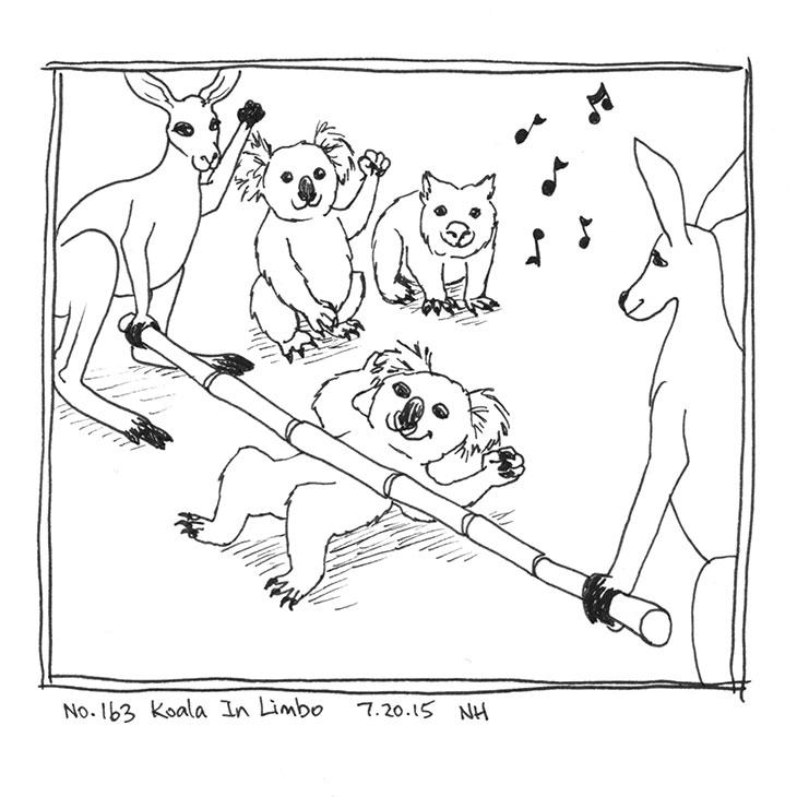 163-koala-in-limbo