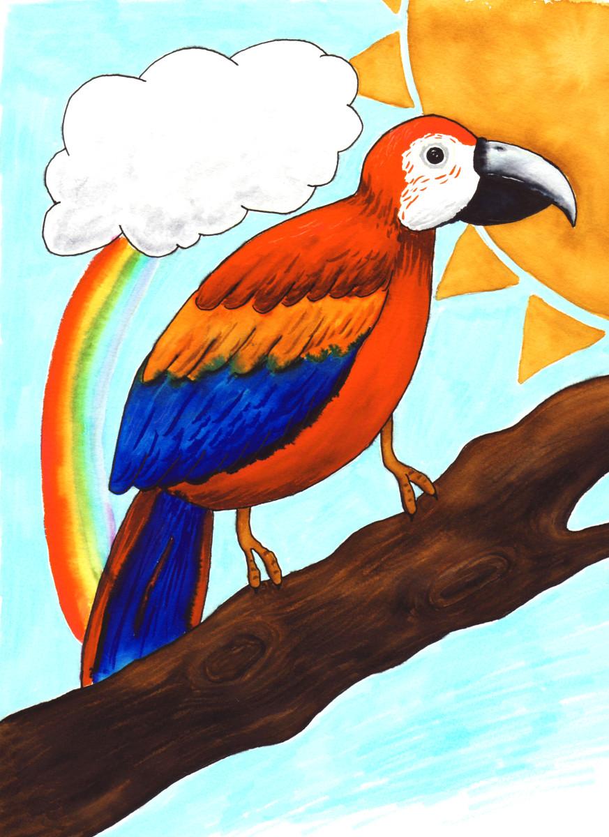 06-parrot
