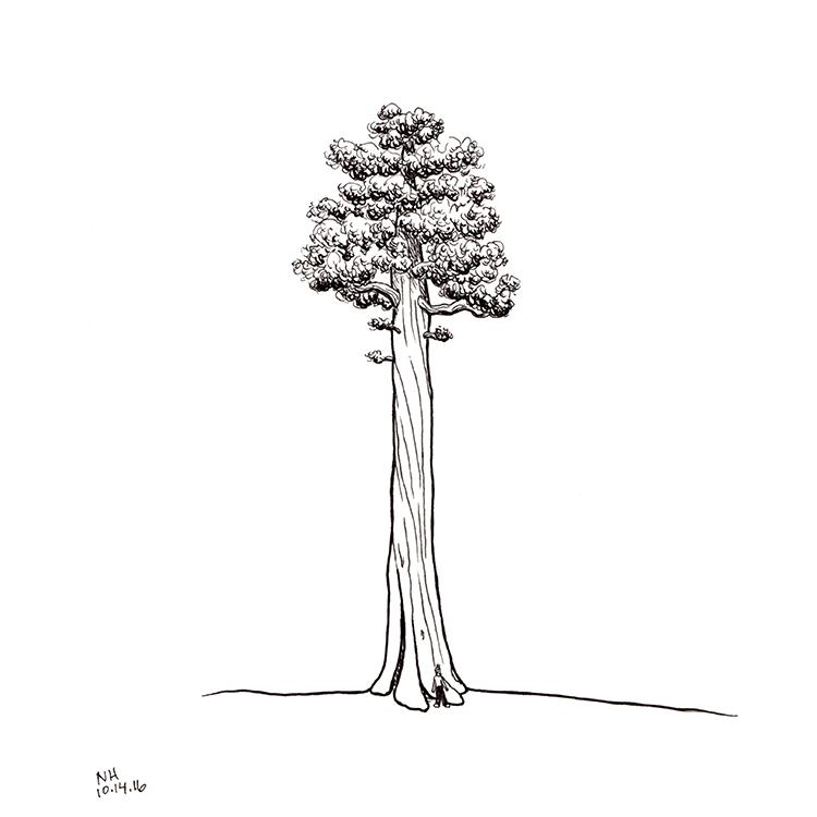 211-tree